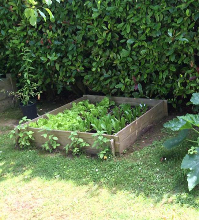 le jardin potager s offre une coupe au carr mon envie maison. Black Bedroom Furniture Sets. Home Design Ideas